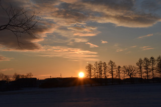sunrise.jpg